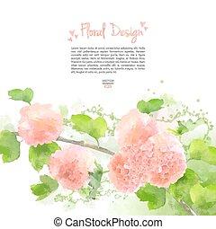 Vector Watercolor Flowers Hydrangea - Pink Vector Watercolor...