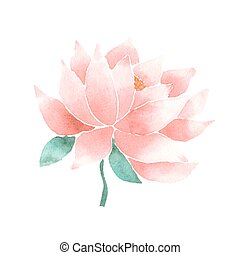 Vector watercolor lotus flower pink - Watercolor lotus...