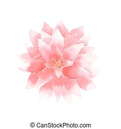 Vector watercolor lotus flower pink - Watercolor lotus...