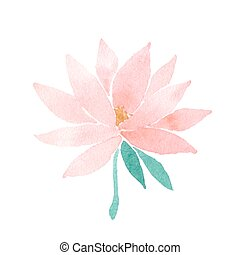 Vector watercolor lotus flower pink