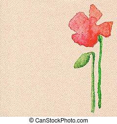 Vector watercolor poppy flower