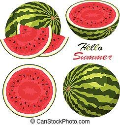 vector watermelon background set