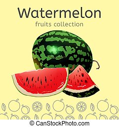 Vector Watermelon Image