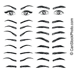 vector, wenkbrauw, eyes, vrouwen, man