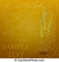 Vector wheat creative background