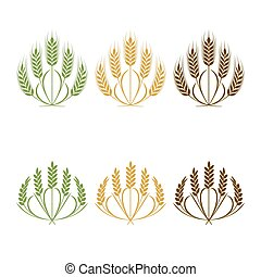 Vector Wheat ears isolated illustration on white