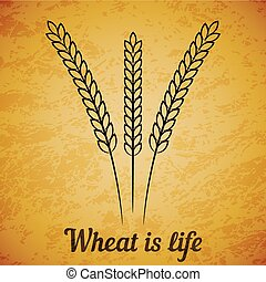 Vector wheat ears on yellow