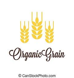 Vector wheat icon