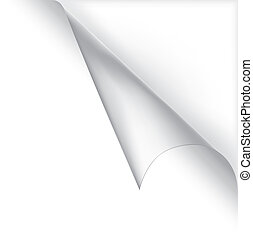 Vector white curled corner - White vector page curled...