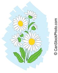 vector white flowers on blue background