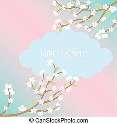 white sakura blossom card