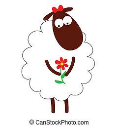 vector white sheep