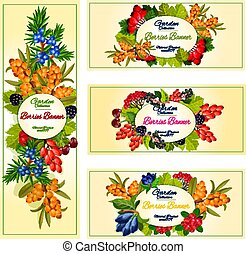 Vector wild berries and fruits banners set