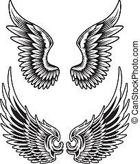 Vector Wing Set - editable vector illustration of spread...