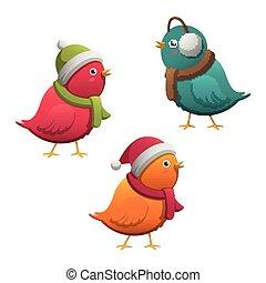 Vector Winter Birds