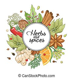 Vector winter round design with spices and herbs