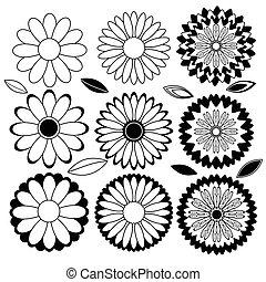 vector, witte bloemen, black