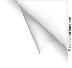 vector, witte , gekrulde, hoek