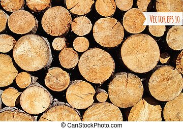 Vector wood log background.