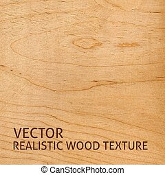 Vector wood texture - Realistic plywood texture. Vector ...