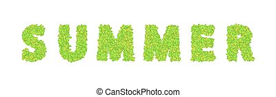 vector word summer with leaves on a white