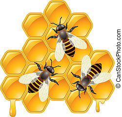 vector working bees on honeycells - vector working bees on...