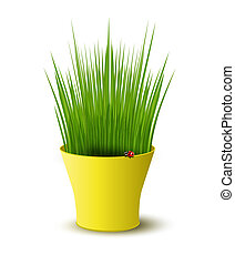 vector yellow pot with green grass
