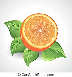Vector yummy orange on white background with green leaves