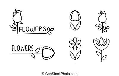 vector, zijn, salon, gebruikt, winkel, identiteit, set, het brandmerken, illustratie, floral, bloem, ontwerp, groenteblik, achtergrond, bloemist, logo, witte bloemen, communie, lineair