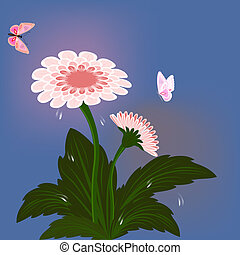 vector, zinnia, mariposas, flor, card.