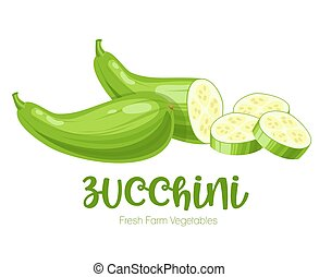 Vector zucchini isolated on white background.Vegetable illustration for farm market menu. Healthy food design poster. Cartoon style vector illustration