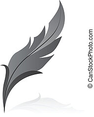 grey feather - Vectorillustration of grey feather