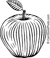 Vectorized Ink Sketch of an Apple