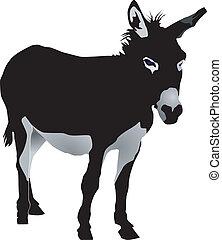 donkey - vectors donkey