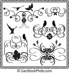 vectors graphics flowers and birds.