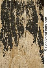 ved, strand, planka, med, korn, specificera, och, stor, svart, grunge, stripes