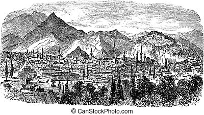 veduta città, occidentale, tacchino, kotyaion, o, cotyaeum, kütahya, incisione, vendemmia