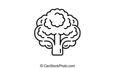 Vegan broccoli icon animation best object on white background
