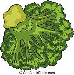 Vegan broccoli icon, cartoon style