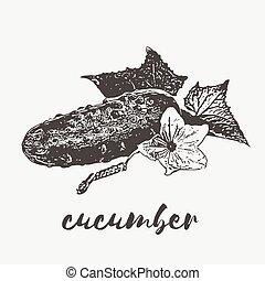 vegan organic cucumber