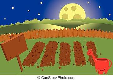 vegetable garden by night