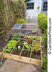 Vegetable garden with assortiment vegetables and cold...