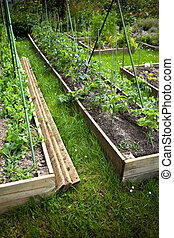 Vegetable growing in a charming classic garden