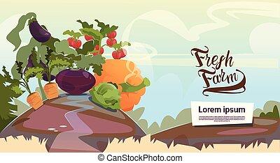 Vegetable Harvest Eco Fresh Farm Concept