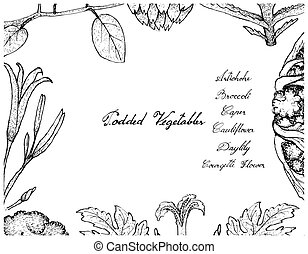 Vegetable, Illustration Frame of Hand Drawn Sketch Fresh...