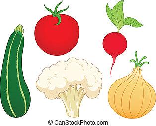 Vegetable set 1 - Vegetable set: zucchini, tomato, radish,...