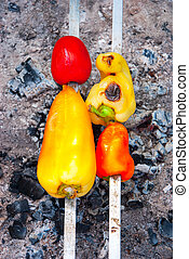vegetable skewer on barbecue grill with fire