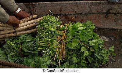 Vegetable sold on floating canoe, Srinagar - Extreme...