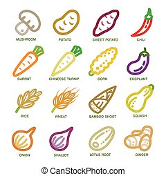 vegetable thin line icon