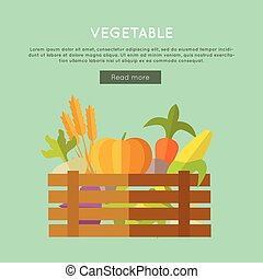 Vegetable Vector Web Banner in Flat Design.